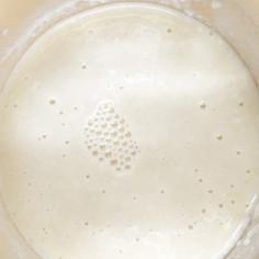 あこ酵母の基本【種起こし】