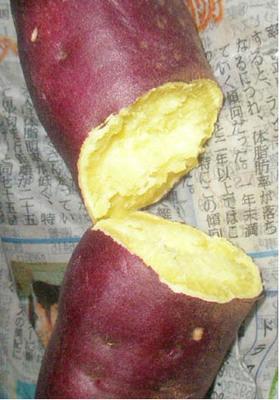 新聞紙 de ♪簡単に焼き芋♪ができます