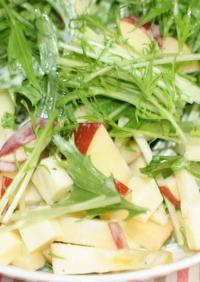 リンゴとチーズの水菜サラダ