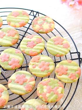 春の味♪桜香るクッキー