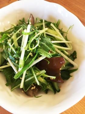 生キクラゲのサラダ