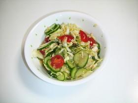 野菜の酢っぱいサラダ