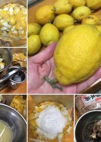 レモン丸ごと利用術