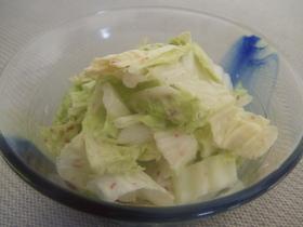 白菜だけでもう1品♪簡単サラダ