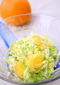 爽やか~❀春キャベツとオレンジのサラダ