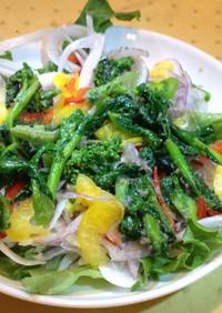 新玉ねぎと菜の花のアンチョビマリネサラダ