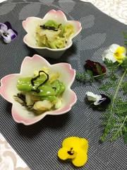 <作り置き>春キャベツと塩こんぶのナムルの写真