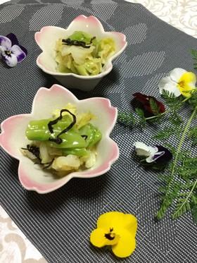 <作り置き>春キャベツと塩こんぶのナムル