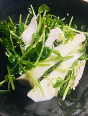 豆苗の和え物*簡単美味しいダイエットの写真