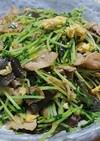 豆苗の中華炒め≦ФωФ≧
