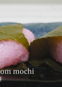 桜餅【みけねこ】