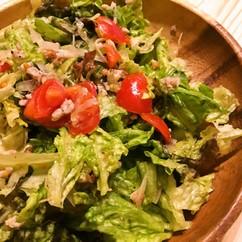 トマトとひき肉の生レタスサラダ