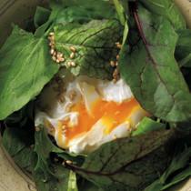 落とし卵サラダ