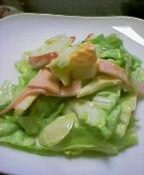 春キャベツとじゃがいものサラダ