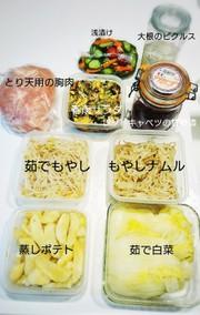 作り置きおかず常備菜で糖質制限2.3日の写真