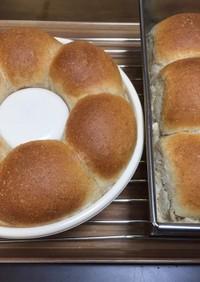 全粒粉でミニ食パン