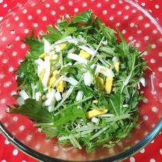 水菜とツナの簡単ミモザ風ホットサラダ✨