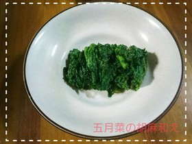 【田舎野菜】五月菜の胡麻和え
