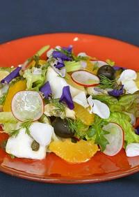 春の柑橘と野菜 アオヤギ貝のサラダ仕立て