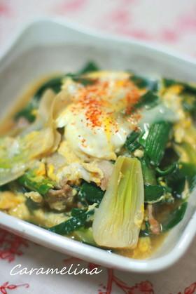 葉玉ねぎと豚肉の卵とじ煮