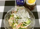 サラダにちょこっとシラス(*^^*)