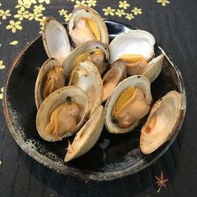 ホンビノス貝の酒蒸し(バター醤油味)