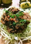 おいしいよ!高野豆腐でベジ肉みそ風