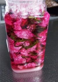 八重桜に砂糖漬け