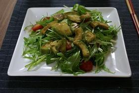 簡単♥アボカドと水菜のサラダ