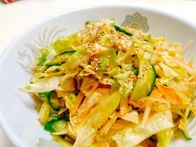 【胡瓜とレタスの韓国風ピリ辛サラダ】