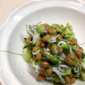 納豆・しらす・ブロッコリーの和え物