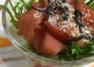 トマトの冷たいサラダ