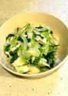 新玉ねぎと豆苗のサラダ