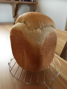 HB 早焼しっとりハニーミルク生食パン