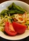 新玉ねぎとパプリカのサラダ