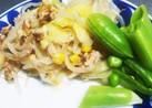 キャベツともやしの味付きサラダ