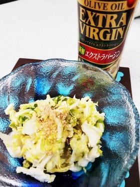 腸活デブ菌★酢キャベツ食べやすいオリブ油