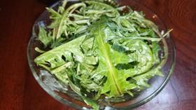タンポポと水菜の春のサラダ