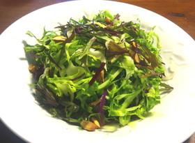紫水菜と春キャベツのサラダ
