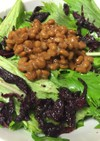 水菜・納豆・赤紫蘇サラダ