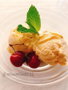 お砂糖なし!バニラアイスクリーム(動画有