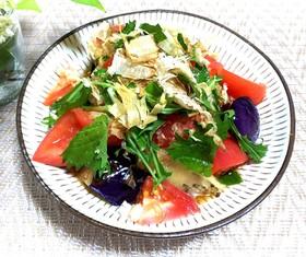 茄子とトマトのおろしサラダ♪