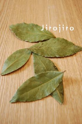 月桂樹の葉☆自家製まっすぐローリエ