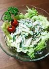 サバ水煮缶と大根とキュウリの簡単サラダ