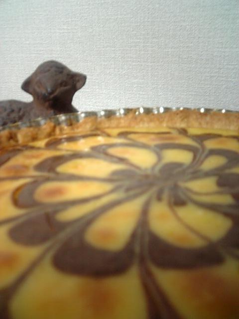 チョコの花咲く✿チーズケーキタルト