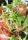 簡単早い水菜トマト新たまねぎサラダ