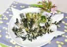 山菜☆コゴミとタラの芽の天麩羅☆