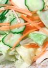 色々野菜の簡単やみつきキャベツ