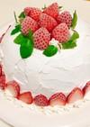 2層のアイスケーキ♡市販アイスで簡単♪