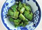 スナップ豌豆とピーマンのオイ醤ナンプ炒め